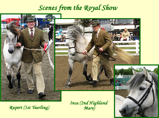 Balleroy Successes at The Royal Show